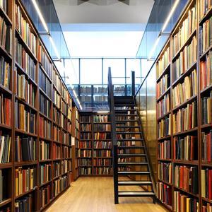 Библиотеки Вирандозера